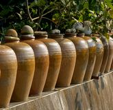Row of Pickling Jars Royalty Free Stock Photos