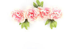 Row of Pink Peony Flowers on a White Styled Desktop  - Silk Arti Royalty Free Stock Photography