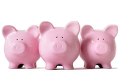 Row of pink piggy banks Royalty Free Stock Photos