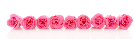 Row pink soap roses. Row with pink soap roses isolated over white stock photos