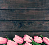 Row of pink tulips on dark rustic wooden background. Spring flow Royalty Free Stock Images