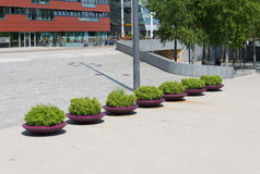 Row of planters Royalty Free Stock Photo