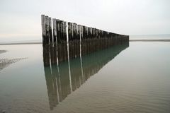 Row of poles in the sea Royalty Free Stock Photos