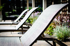 Row of poolside lounge chairs. Row of empty pool chairs on the deck Royalty Free Stock Photography
