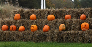A row of pumpkins on hay bales Stock Photography