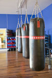 Row of punching bags. A row of 4 heavy punching bags in a modern gym royalty free stock image