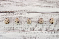 Row of quail eggs on rustic wooden background. Top view Royalty Free Stock Images