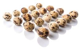 Row Of Quail Eggs VI Royalty Free Stock Photo