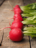 Row of radishes. Fresh organic radishes in a row on a wooden table Stock Photos