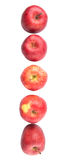 A Row Of Red Apples VII Royalty Free Stock Images