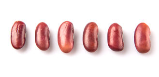 Row Of Red Kidney Beans II Royalty Free Stock Photo