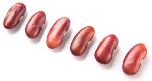 Row Of Red Kidney Beans III Royalty Free Stock Photography