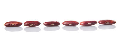 Row Of Red Kidney Beans VI Stock Photography