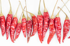 Row of red peppers Royalty Free Stock Photography