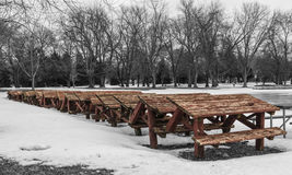 Row of Red Picnic Tables in the Snow Royalty Free Stock Images