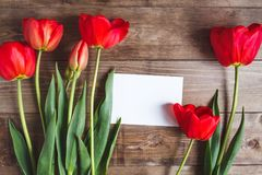 Row of red tulips on wooden background with space for message. Women`s or Mother`s Day background. Top view. Row of red tulips on wooden background with space Royalty Free Stock Images