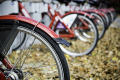 Row of rental bicycles. A row of city rental bicycles Royalty Free Stock Photo