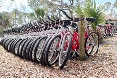 Row of Rental Bicycles for Green Transportation Royalty Free Stock Photo