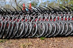Row of Rental Bicycles for Green Transportation Stock Image