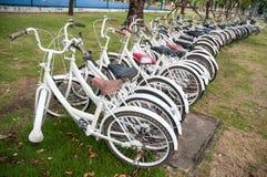 A row of rental bikes. A row of rental bikes Stock Photos