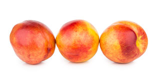 Row of ripe nectarines isolated on white Stock Images