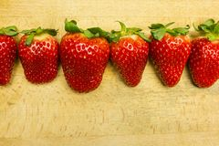 A row of ripe red strawberries. A row of ripe red strawberries on a wooden board Royalty Free Stock Photo