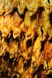 Row of roasted duck royalty free stock images