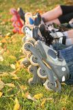 Row of roller legs on grass Royalty Free Stock Image