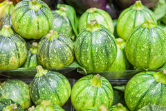 Row of round green courgettes on shelf in market Stock Photography