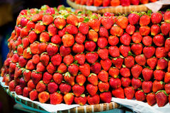 Row upon row of fresh, juicy  garden strawberries for retail sal. E at an outdoor market Royalty Free Stock Photos