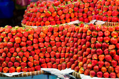 Row upon row of fresh, juicy  garden strawberries for retail sal. E at an outdoor market Stock Photography
