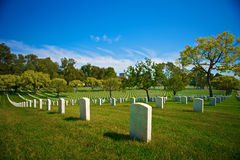 Row on Row of Tombstones Stock Photo