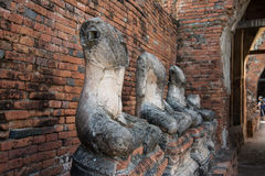 Row of ruin buddha statue in wat chai wattanaram, ayutthaya, thailand Royalty Free Stock Photo