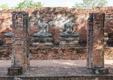 Row of ruin buddha statue in wat chai wattanaram, ayutthaya, thailand Royalty Free Stock Images