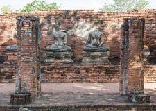 Row of ruin buddha statue in wat chai wattanaram, ayutthaya, thailand Royalty Free Stock Images