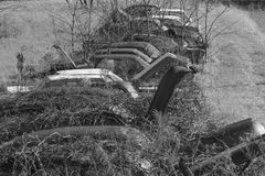 Row of Rusting Junk Cars and Trucks. Junk yard collection of rusting cars and trucks overgrown by weeds and brush Royalty Free Stock Photo