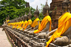 Row of Sacred Buddha Stock Image