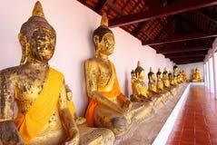 Row of Sacred Buddha images Stock Image