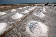 Row of salt pile. SAMUTSONGKHRAM,THAILAND - FEB 18: Unidentified workers carrying salt at the salt farm on February 18,2014 in Samutsongkhram Province,Thailand royalty free stock images