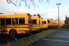 Row of school buses. A row of parked public school buses Royalty Free Stock Photography