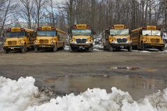 Row of School Buses. A row of school buses sit in a muddy lot with snow in the foreground Royalty Free Stock Photography