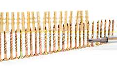 Row of screw Stock Images