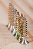 Row of screws on wood Stock Photography
