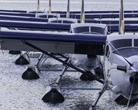 A row of seaplanes docked royalty free stock image