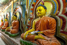 A row of seated Buddha stutues inside the Angurukaramulla Temple in Negombo in Sri Lanka. The temple is believed to be over 300 years old royalty free stock image