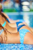 Row of seductive female bodies in pool Royalty Free Stock Images