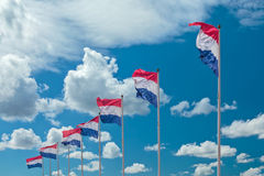 Row of seven Dutch national flags Stock Photography