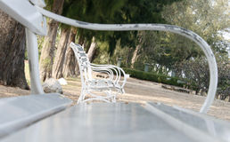 Row of several white benches. In park Stock Image