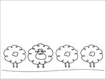 Row of sheep Stock Images