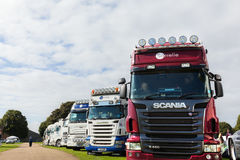 Row of show condition Scania trucks Royalty Free Stock Image